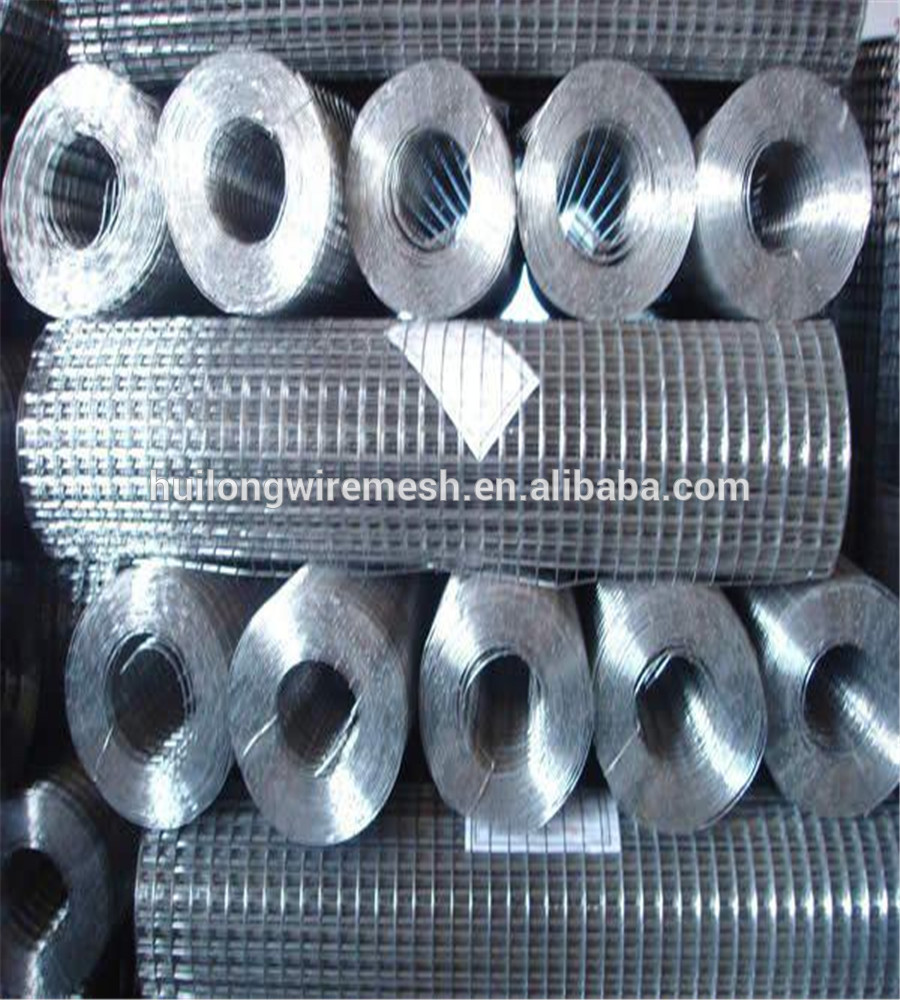 Factory Direct Bird Cage Iron Welded Wire Mesh Roll Italy Maeket