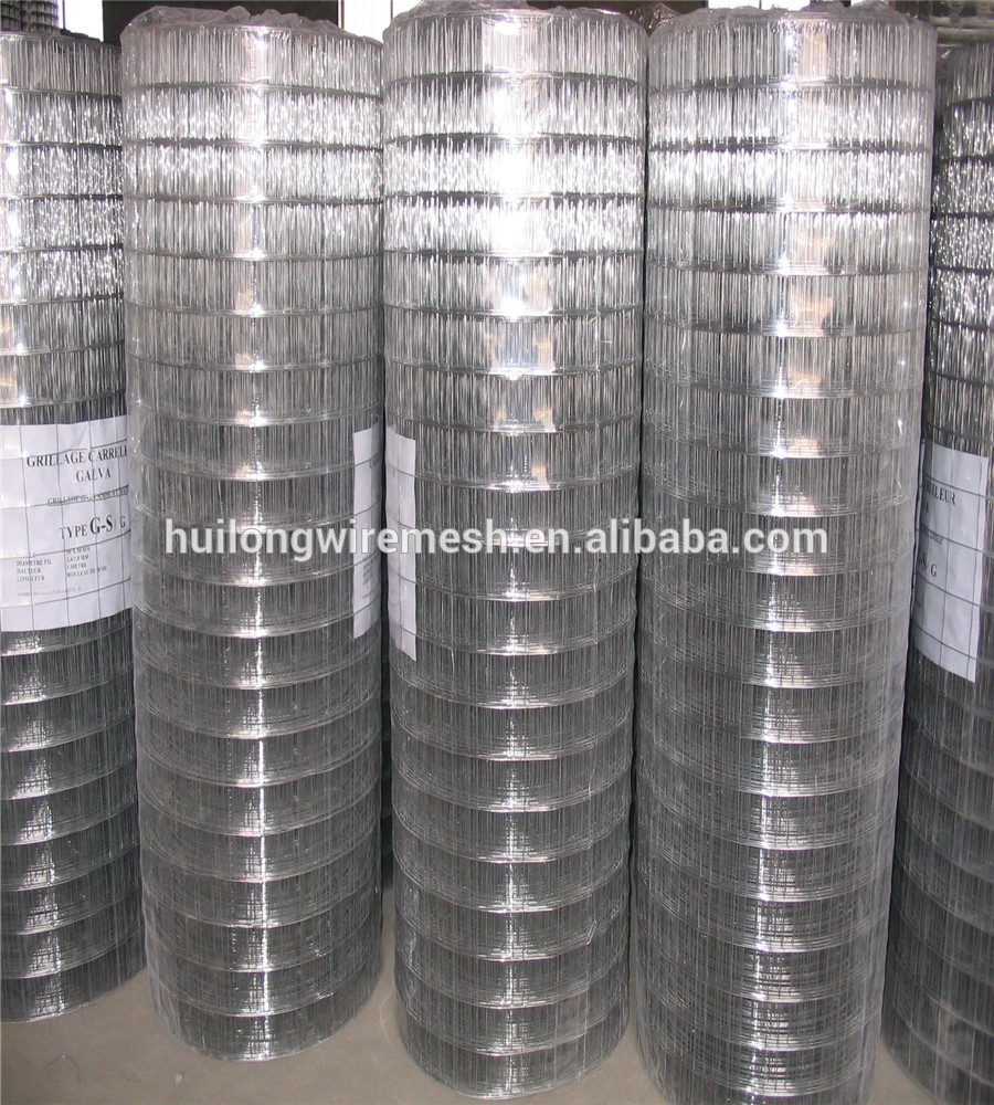RUSSIAN LIBERIA/WELDED MESH ROLLS ,HIGH QUALITY