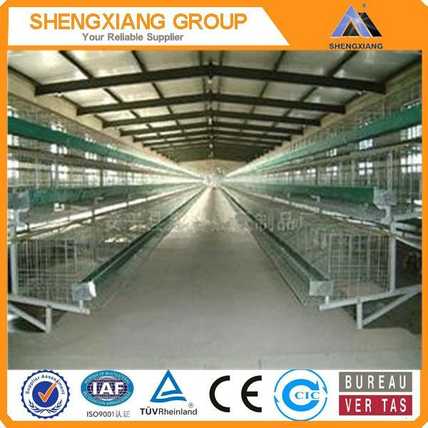 Alibaba China supplier anping county hight Quality Animal Cages wire mesh quail cage wholesaler