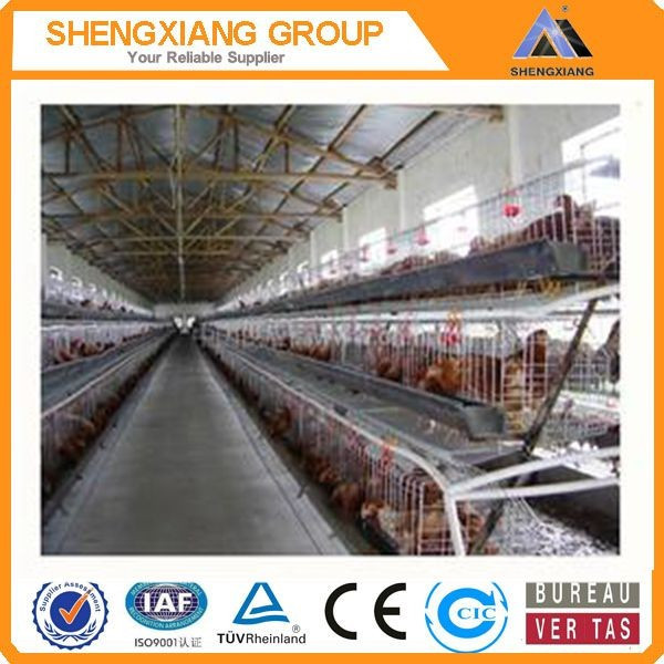 Alibaba China supplier anping county hight Quality Animal Cages wire mesh quail cage factory