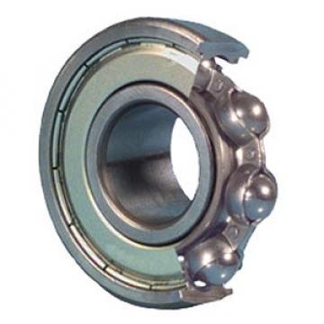 NSK R20Z Ball Bearings