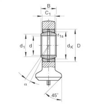 FAG Germany Hydraulic rod ends - GK12-DO