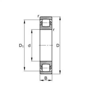 FAG Germany Tonnenlager - 20309-TVP