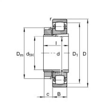FAG Germany Tonnenlager - 20210-K-TVP-C3 + H210