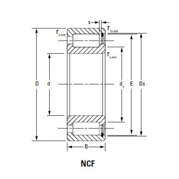 Bearing NCF18/710V