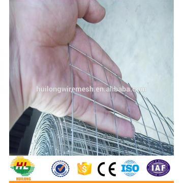 WELDED MESH TYPE SQUARE HOLE SHAPE GI WELDED WIRE MESH