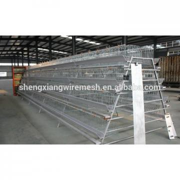 hightop chicken cage by chinese factory