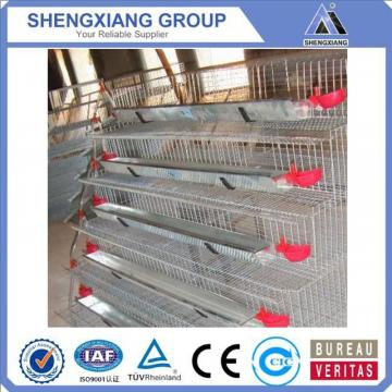 alibaba china supplier chicken cage company for home & garden