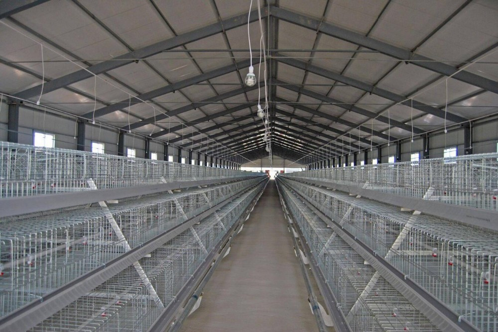alibaba china supplier chicken cage factory