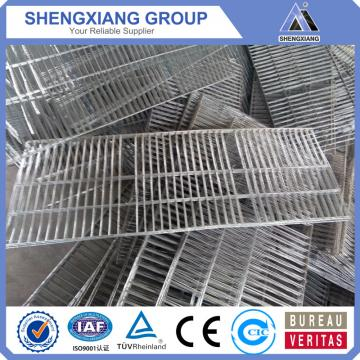 China newly design pigeons cages