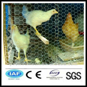 alibaba China wholesale CE&ISO certificated hexagonal chicken wire mesh(pro manufacturer)