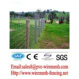 Hot sales Powder Coated Field fence/Farm Fence/Animal fence (pro manufacturer)