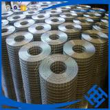 haotong galvanized welded wire mesh factory in alibaba weld wire mesh dog cage