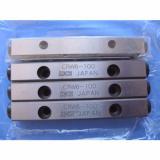 IKO   CRW 6-100 Cross roller bearings and linear guide (New)