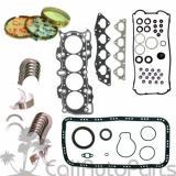 97-01   HONDA CR-V 2.0L DOHC B20B4 B20Z2 GRAPHITE FULL SET RINGS ENGINE BEARINGS